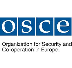 Изабран победнички есеј на конкурсу Мисије ОЕБС-а
